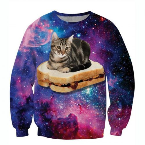 w1213 Raisevern new galaxy 3D sweatshirts funny cat sit on hamburger pattern printed hoodies men women fashion streetwear pullovers